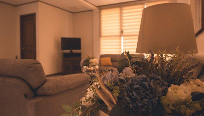 Hotel Suite Colibri